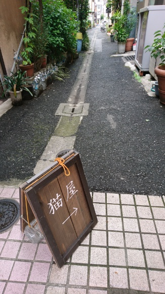 2017-09-03T08:25:22.jpg